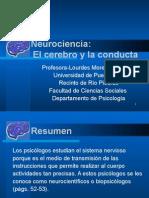Neurociencia - El Cerebro y La Conducta