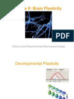 Lecture 10 Plasticity