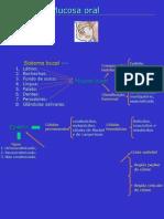 Mucosa Bucal Texto