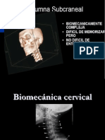 05-06. Biomecanica Cervical 08
