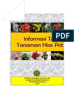 Informasi Teknis Tanaman Hias Pot