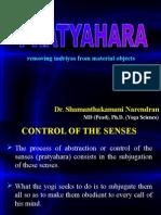 Prat Yahara Pp t 2955