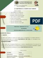 Caso Caja y Bancos Grupo Verde