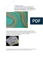 Tambien las serpientes refutan a la evolución