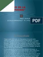 Prezentare Cerc final Franceza.ppsx