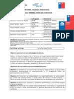 INFORME TALLERES PRVENTIVOS D-11 2015.docx