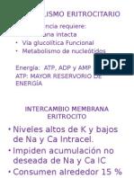 METABOLISMO_GLOBULOS_ROJOS_Y_HEMOGLIOBINA.pptx