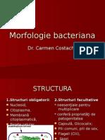Curs 2 Morfologie Bacteriana