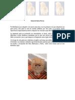 Guia de Gatos Persa