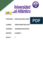 PROFESOR.docx
