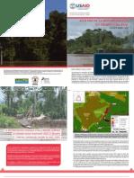 ANÁLISIS DE LA DEFORESTACIÓN EN TIEMPO CASI REAL || Policy Brief N° 3