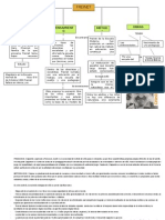 Organizador visual 4.docx