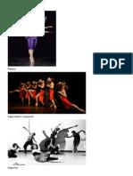 Elementos de La Danza