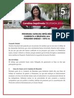 Programa Carolina Sepúlveda - Candidata Delegada gen 2014 #5