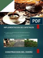 Cafe Minga