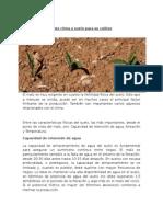 Maiz Clima y Suelo Para Su Cultivo