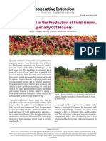 Getting Started in the Production of Field-Grown