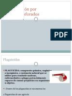 Intoxicación Por Organofosforados.1
