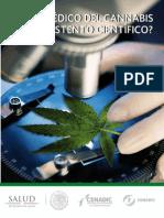 Uso Medico Cannabis
