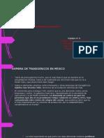 Prsentación de Transgenicos