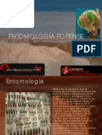 Entomologia_Forense_JGCM