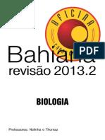 Revisao 2013-2 (1)