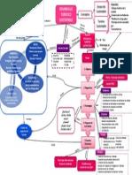 Mapa Conceptual DTS