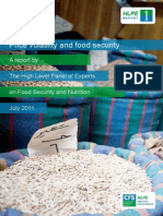 HLPE Price Volatility and Food Security Report