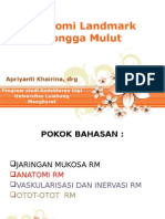 anatomi landmark RM.pptx