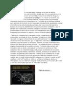 Tórax Imagenes Semiologia