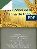 Producción de La Harina de Trigo Completa