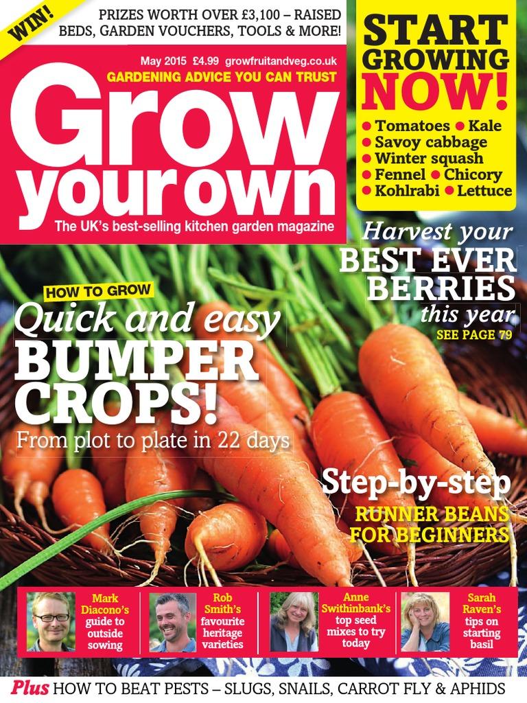 Vegetable Mr Fothergills Flyaway F1-500 Seeds Carrot Pictorial Packet