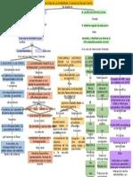 Producto 6 Mapa Conceptual de Lectura La Cultura de La Diversidad.