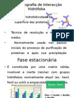 Cromatografia de Interacção Hidrófoba