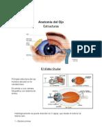 Anatomía del Ojo  word.docx