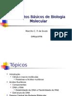 BIO-aula-02-03-04-biologia-molecular.ppt