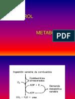 Control MetabólicoControl MetabólicoControl MetabólicoControl Metabólico
