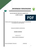 Dominguez Barradas