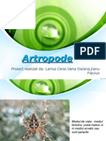 Artropode power point - cls a IX a