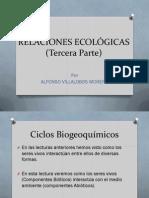 Relaciones ecologicas CICLOS.pdf