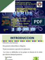 TRABAJO DE VIRUS.pptx