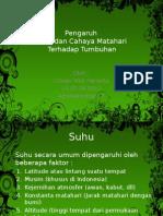 pengaruhsuhudanmatahariterhadaptumbuhan-140525124012-phpapp02