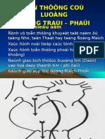 TT Shunt T-P.ppt