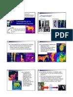 Uso de la Termografía en la Medicina de Equinos