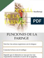 Fisiología de La Faringe