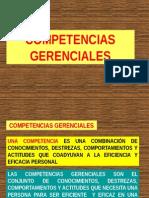 08 - Adm - Competencias Gerenciales - Nestor