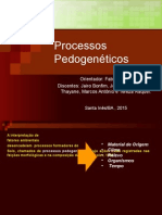Processos Pedogenéticos