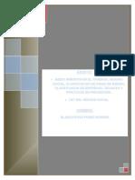 Diplomado Blanca Perez.doc (2)
