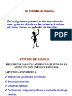 10. Marco Teorico Estudio de Familia