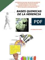 Bases Quimicas de La Herencia Biologia Enf 2012 Prof. Acosta